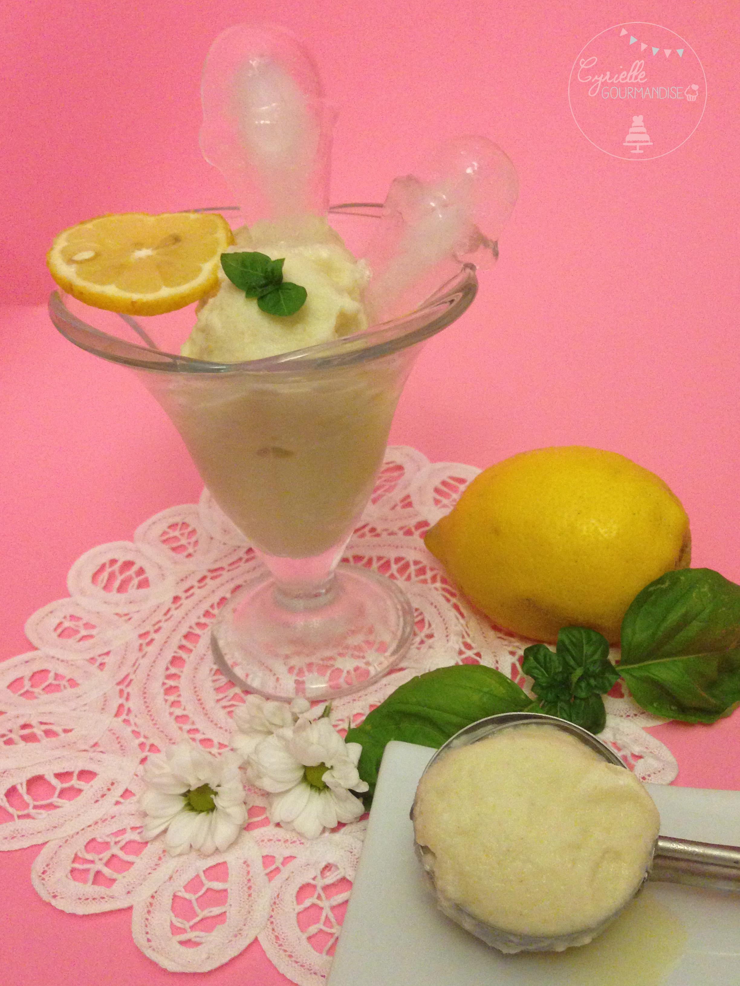 Sorbet citron basilic yaourt 3