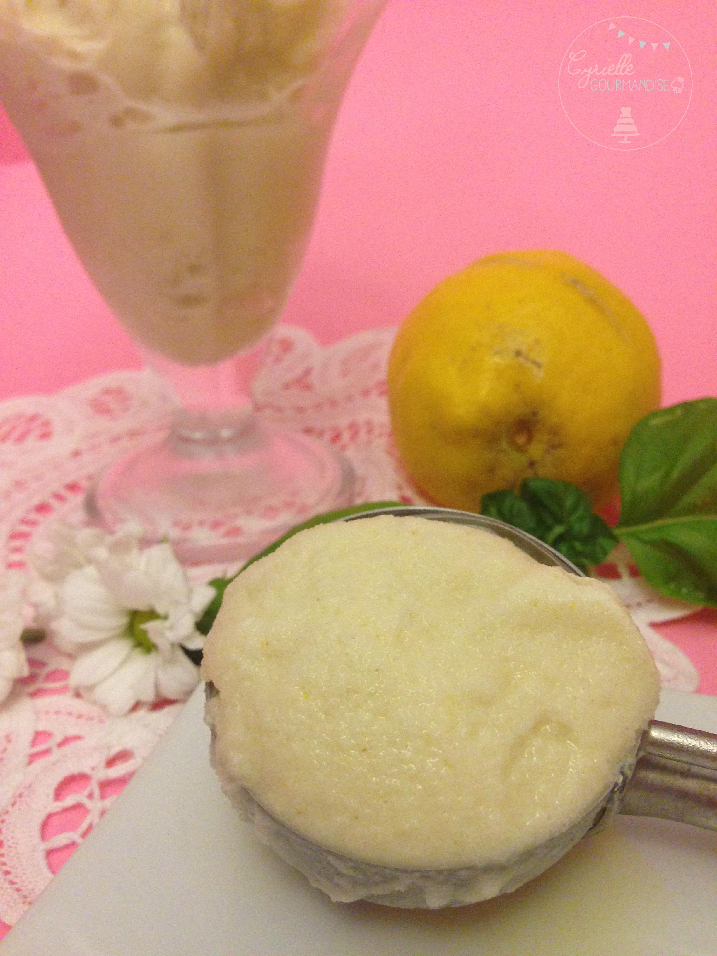 Sorbet citron basilic yaourt 4