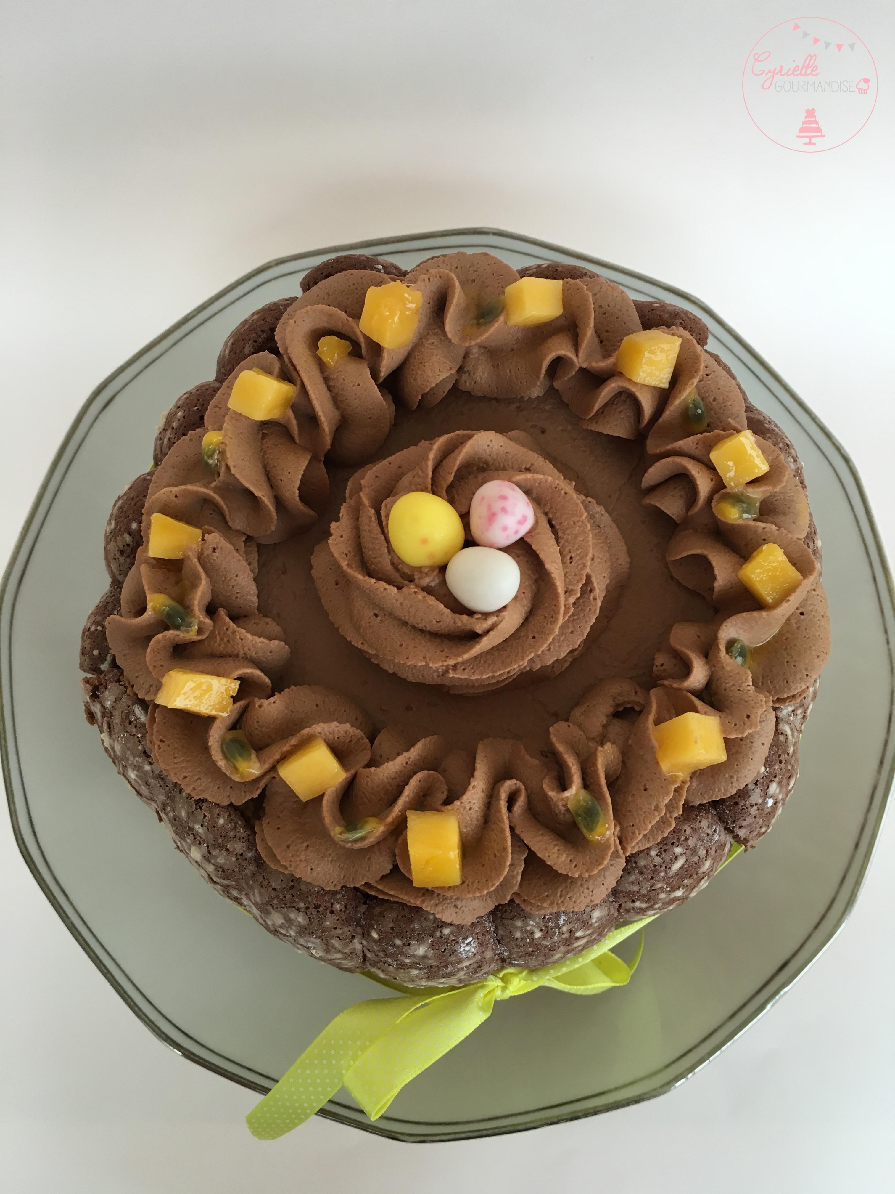 Charlotte chocolat mangue passion 5