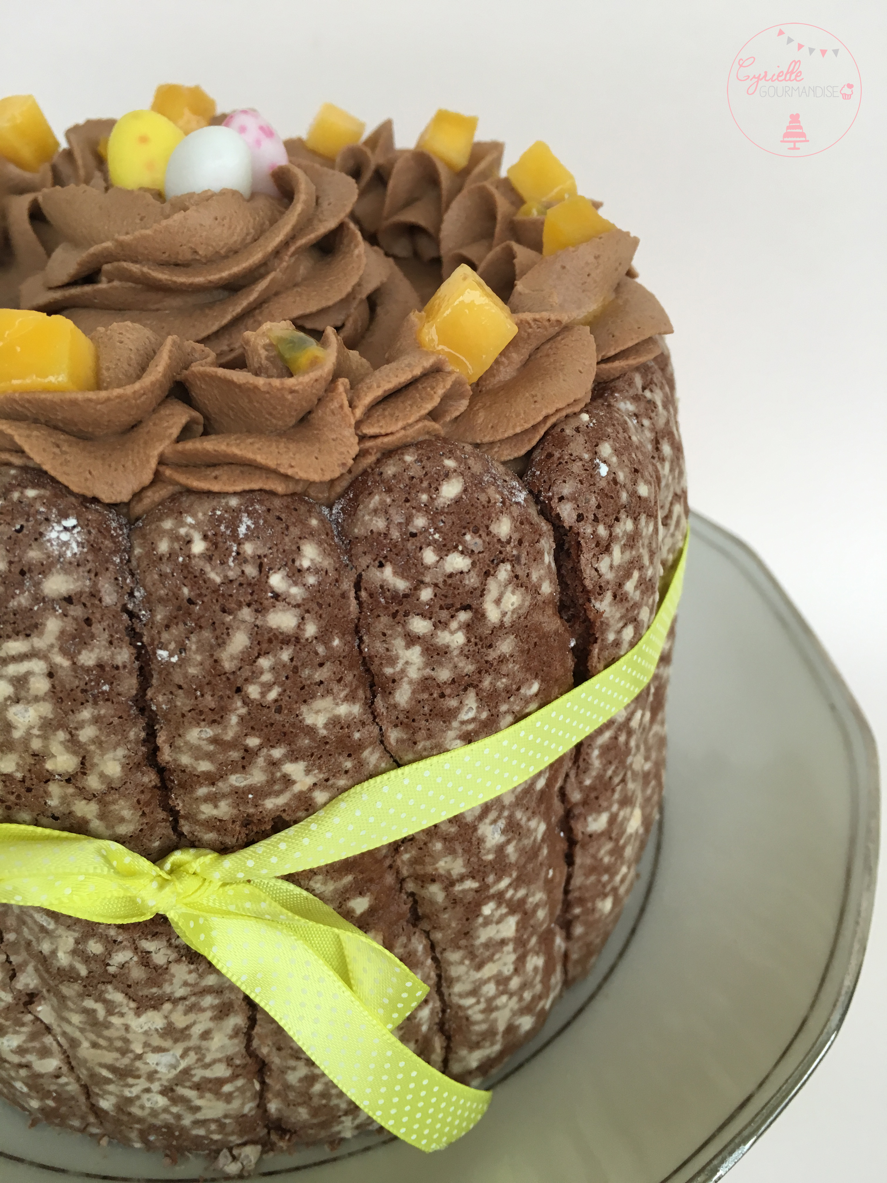 Charlotte chocolat mangue passion