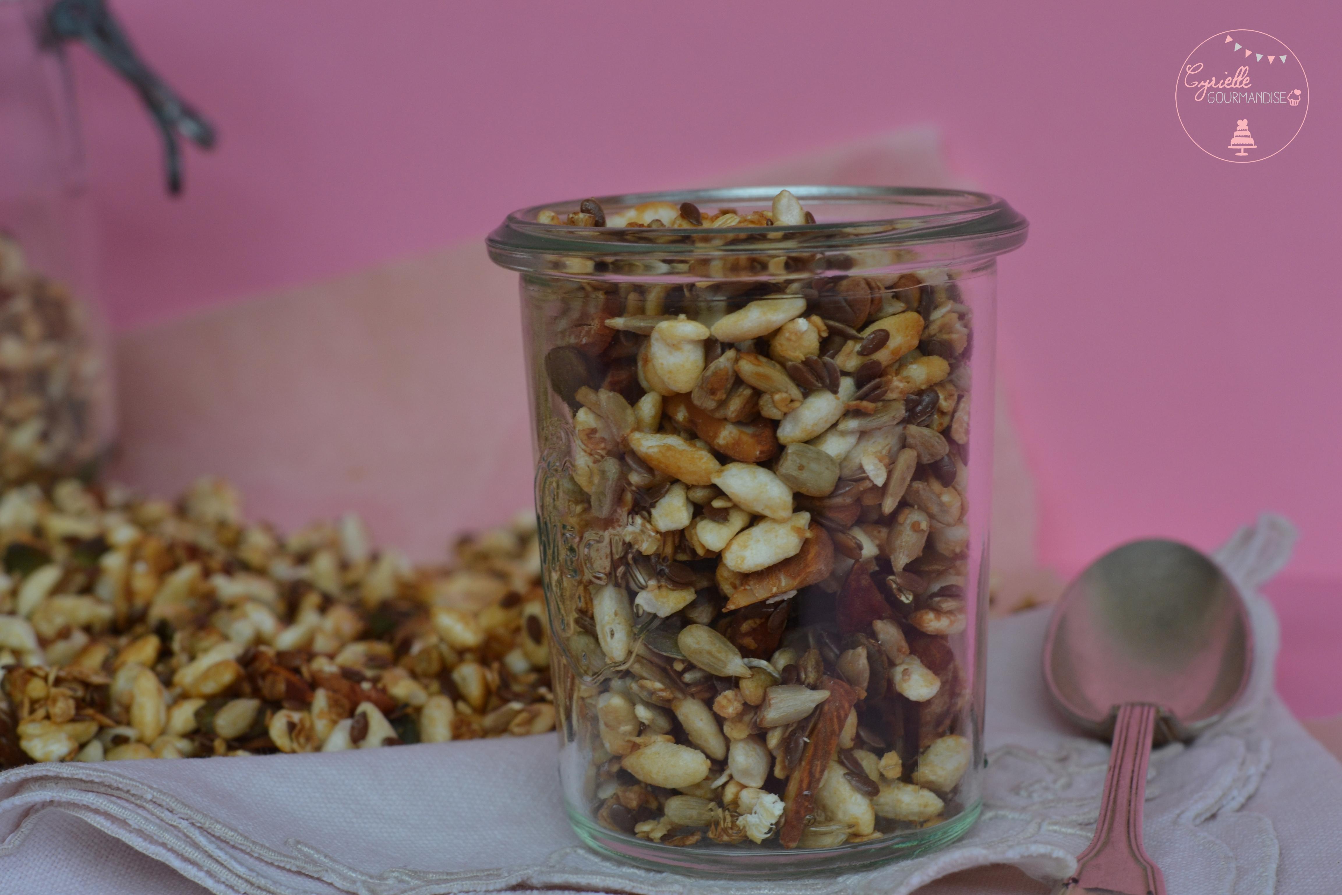 granola-riz-graines-2