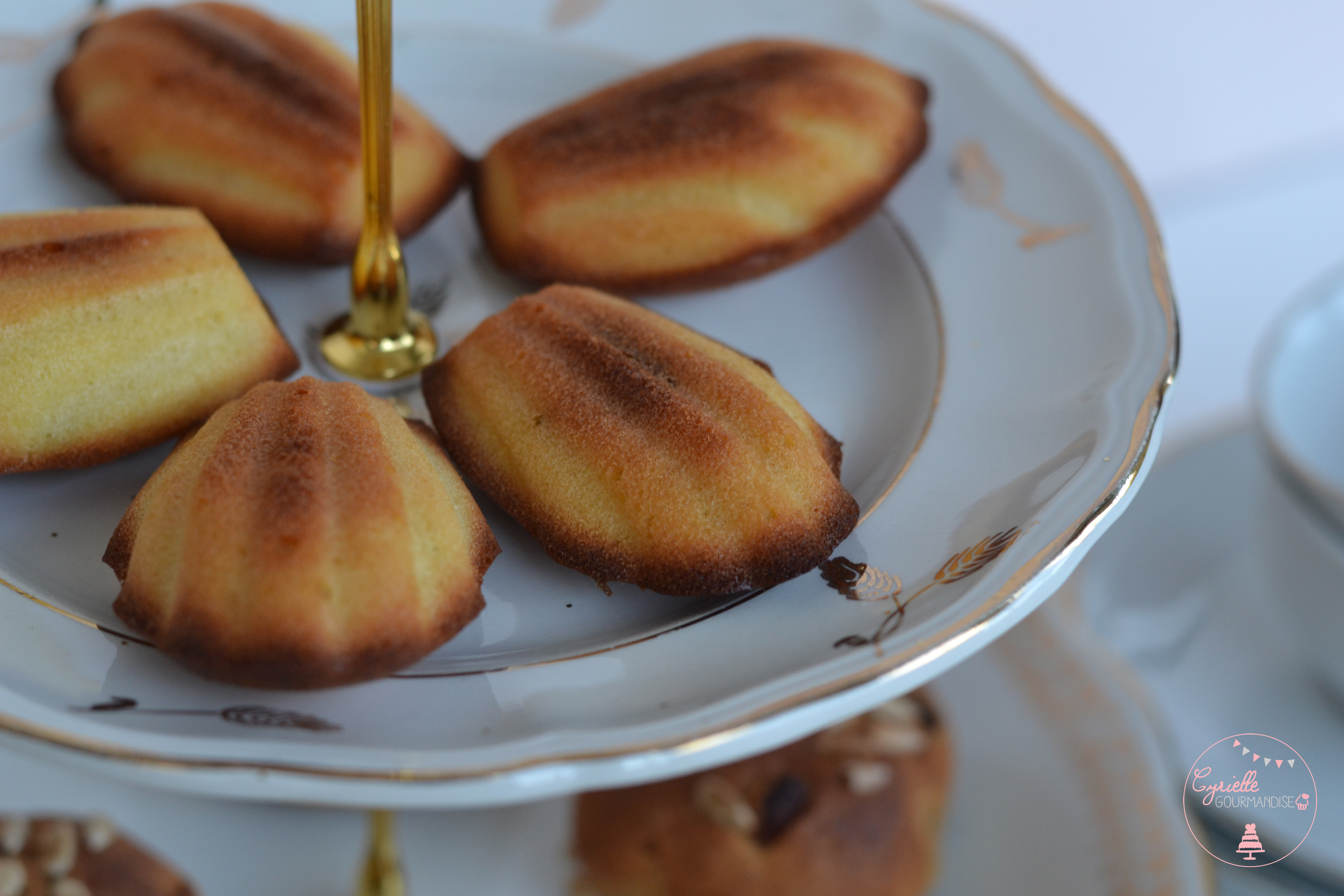 madeleines-praline-4