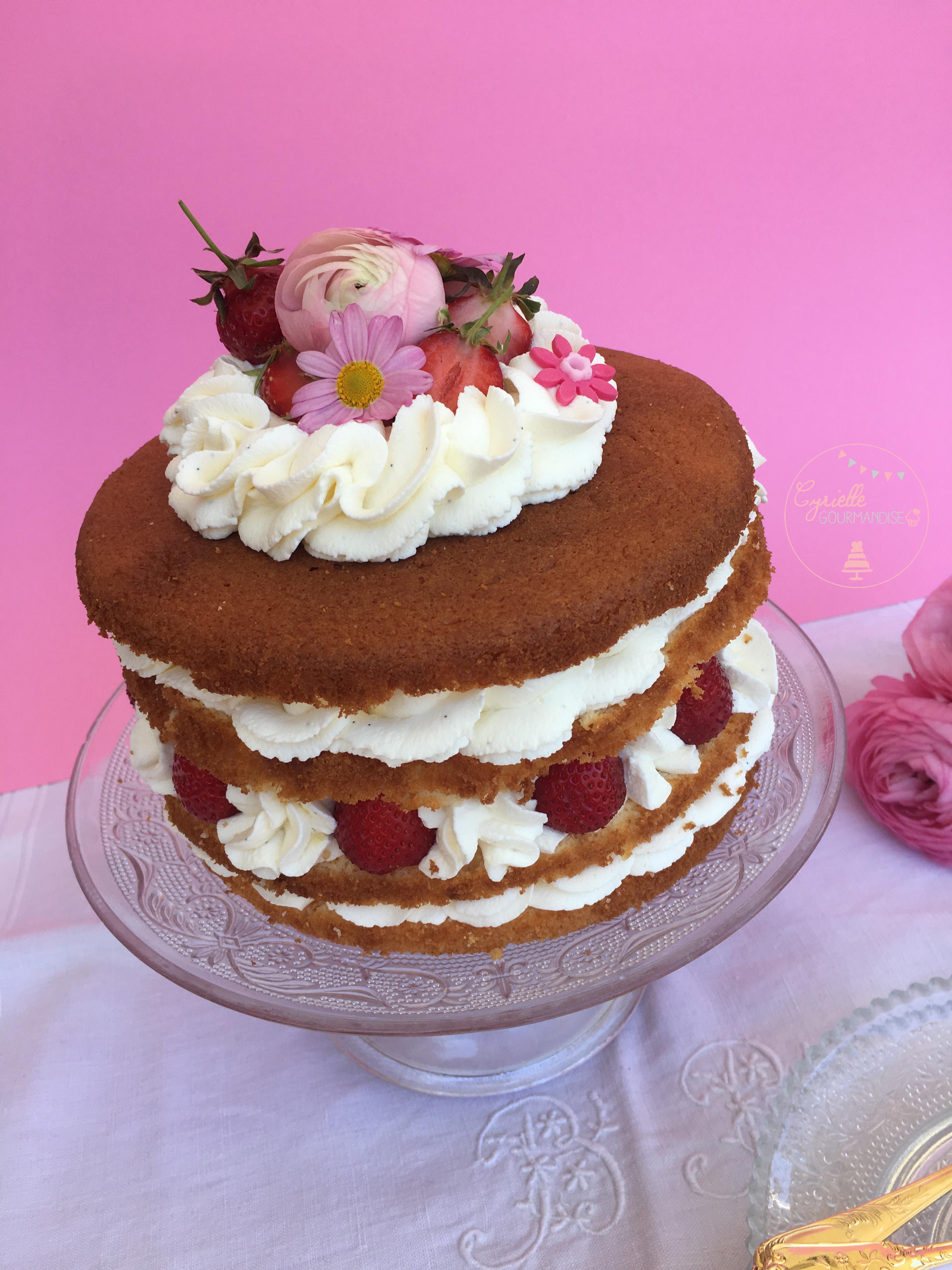 Naked Chiffon Cake Fraise Rhubarbe Vanille 2