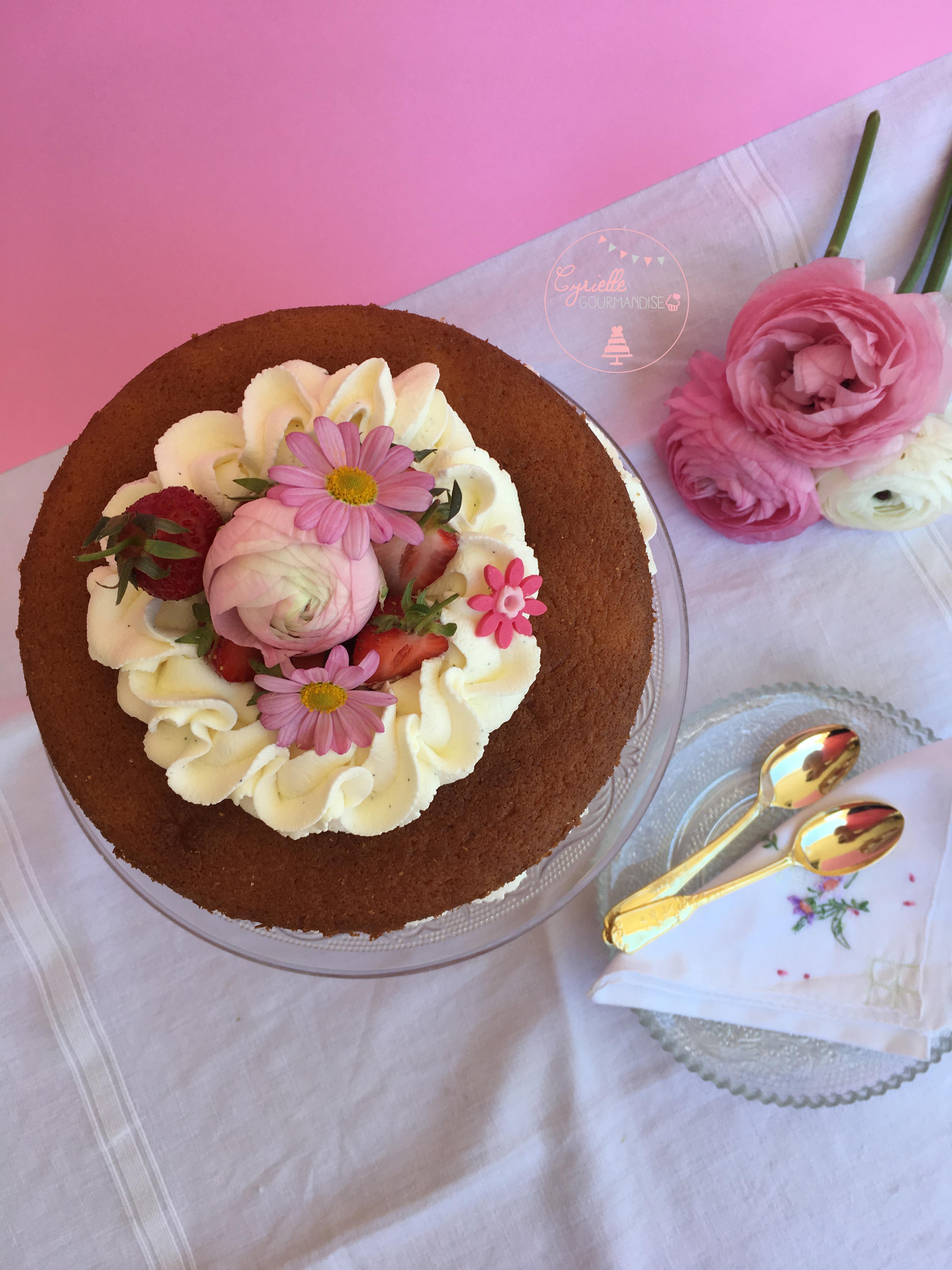 Naked Chiffon Cake Fraise Rhubarbe Vanille 3