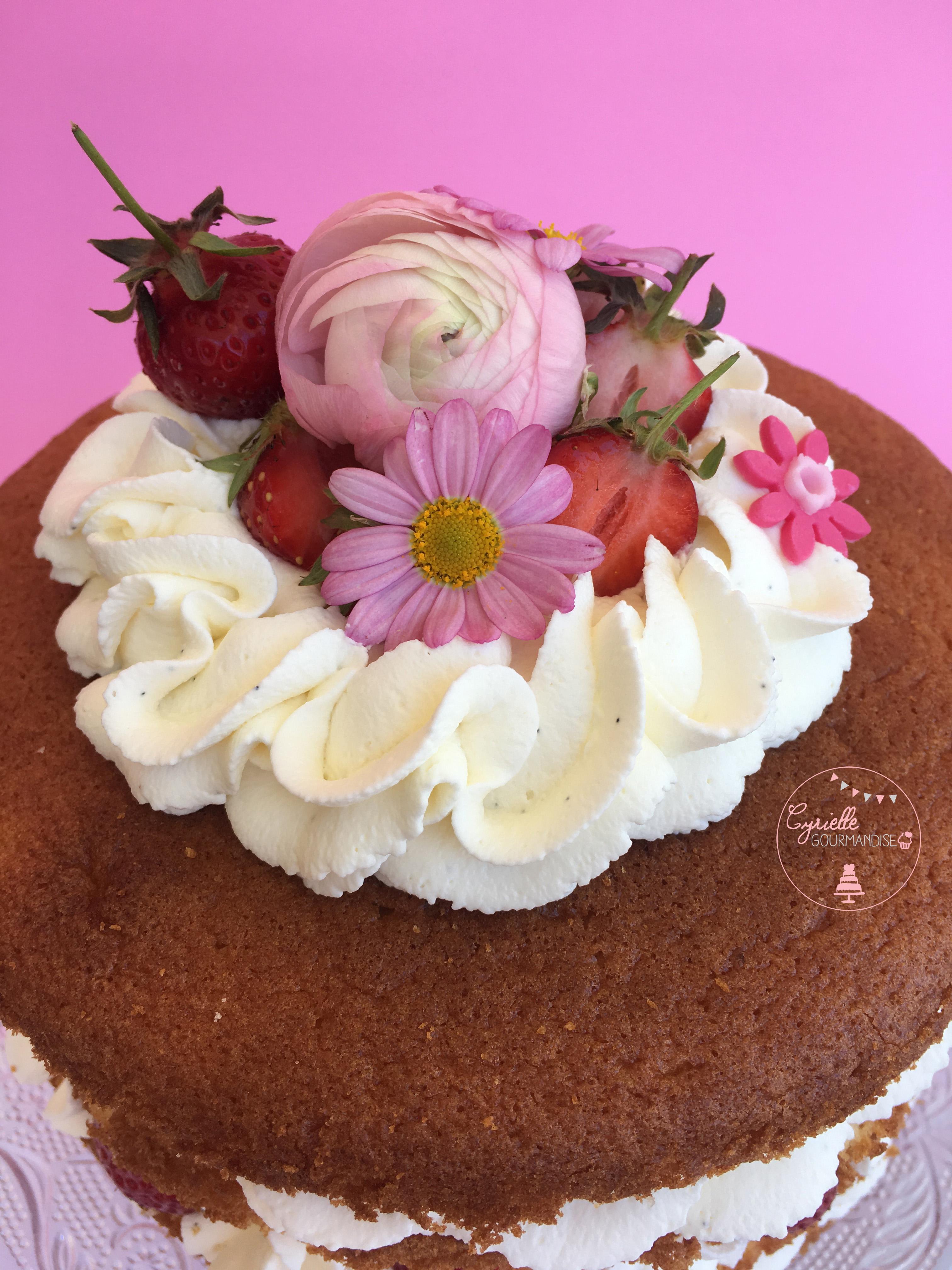 Naked Chiffon Cake Fraise Rhubarbe Vanille 4