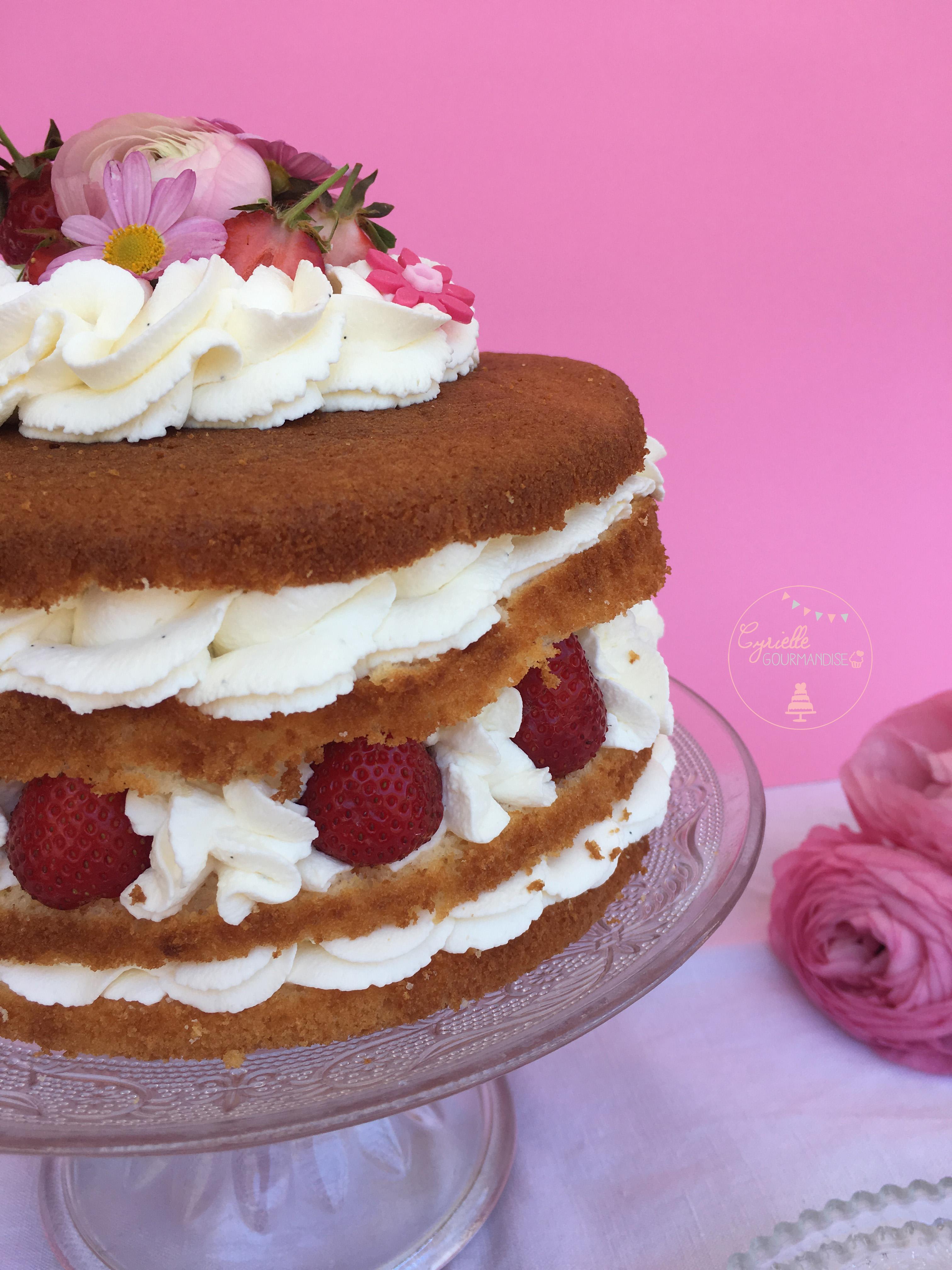 Naked Chiffon Cake Fraise Rhubarbe Vanille 5